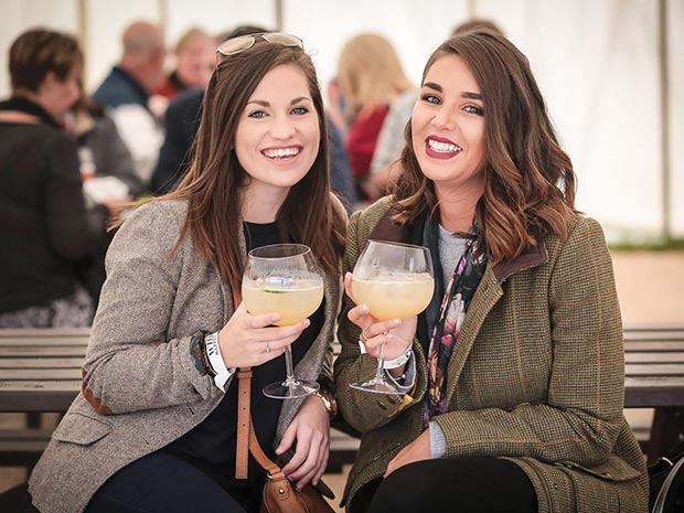Cotswolds Distillery Festival 2019 photo