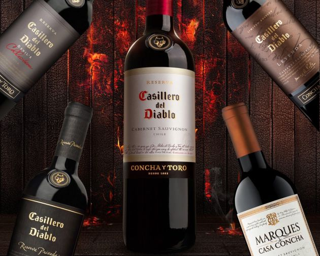 Roust Group Increases Concha Y Toro Sales In Russia And Poland By 68% photo