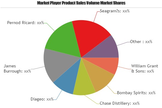 Gin Market Increasing Demand With Key Players Bombay Spirits, Chase Distillery, Diageo, James Burrough – Global Industry Insight photo
