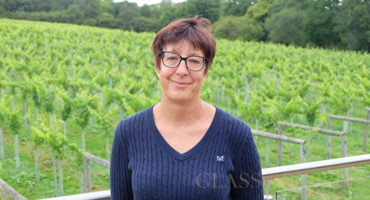 Sam Linter From Bolney Wine Estate Joins Board Of Winegb photo