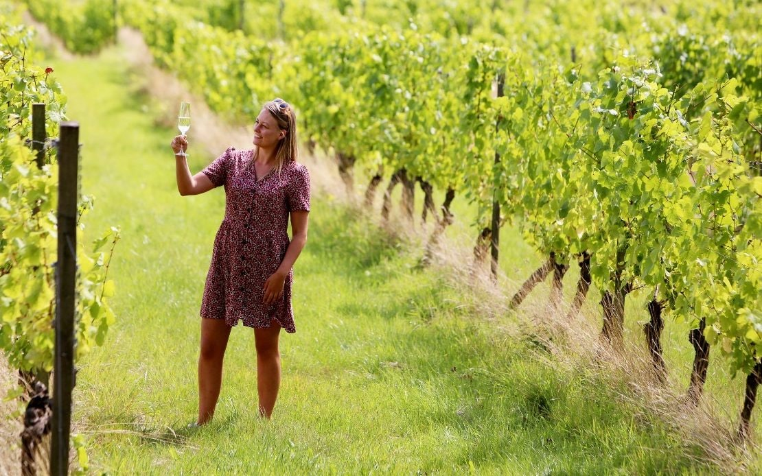 The Best Vineyards To Visit In The Uk  photo