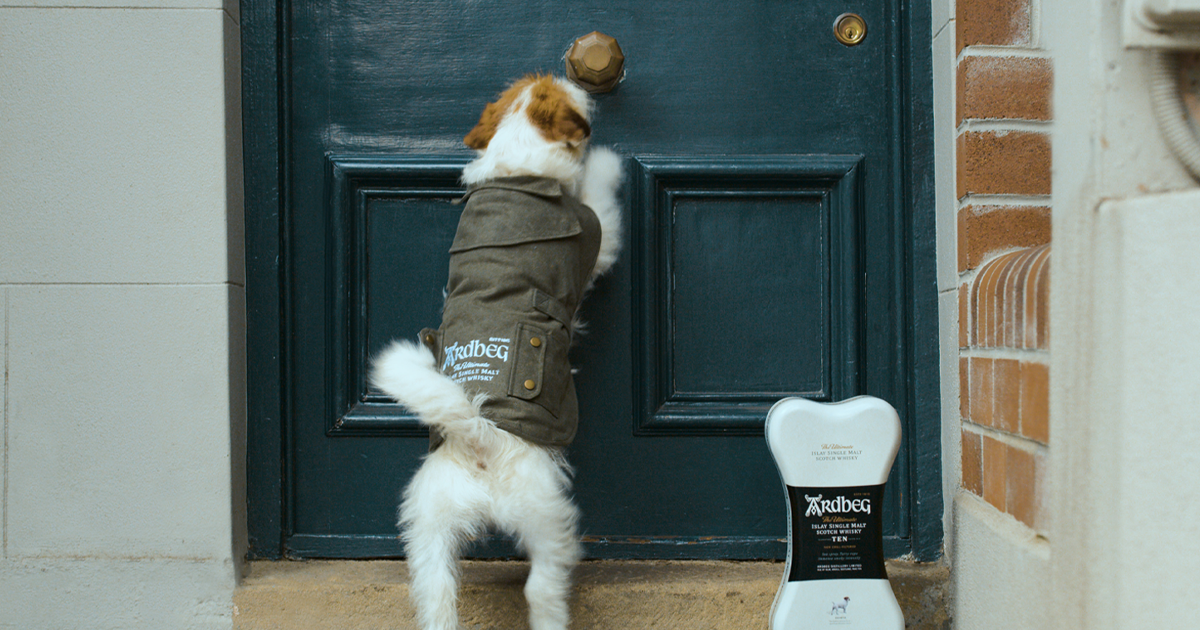 Bless, This Adorable Pup Is Delivering Whisky For Father's Day photo