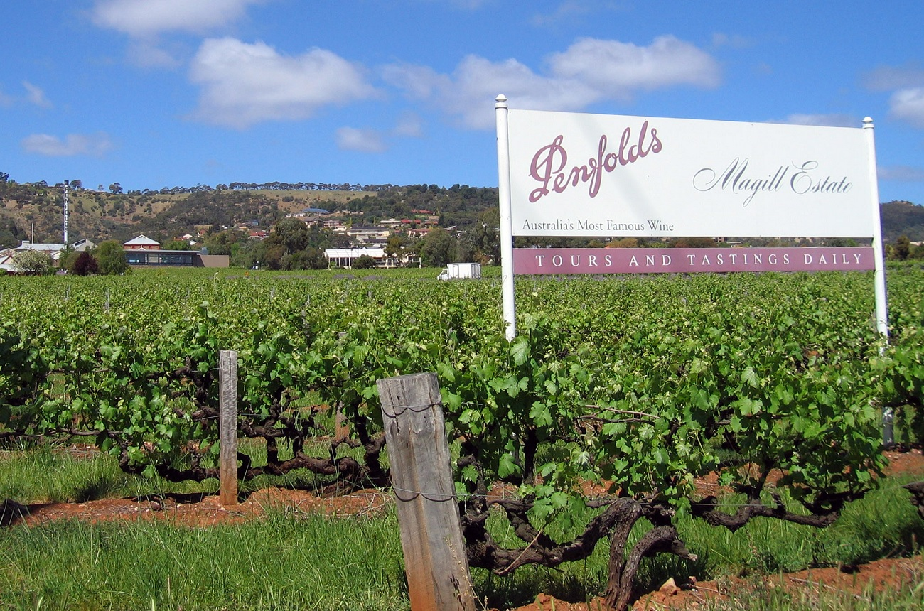 Penfolds Owner Treasury Rides China?s Fine Wine Wave photo