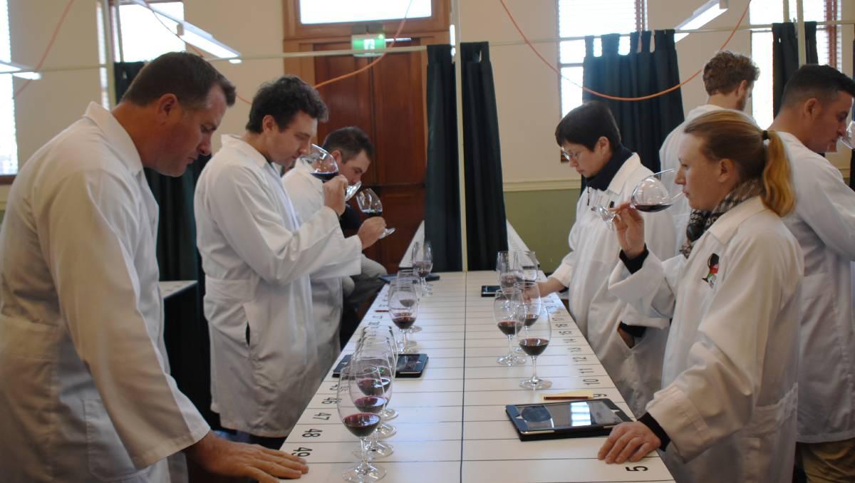 Award Winning Wines At Nsw Small Winemakers Wine Show photo