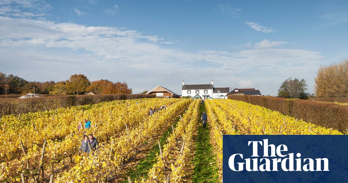 Top 10 Vineyard Stays In The Uk And Europe – To Visit By Train photo