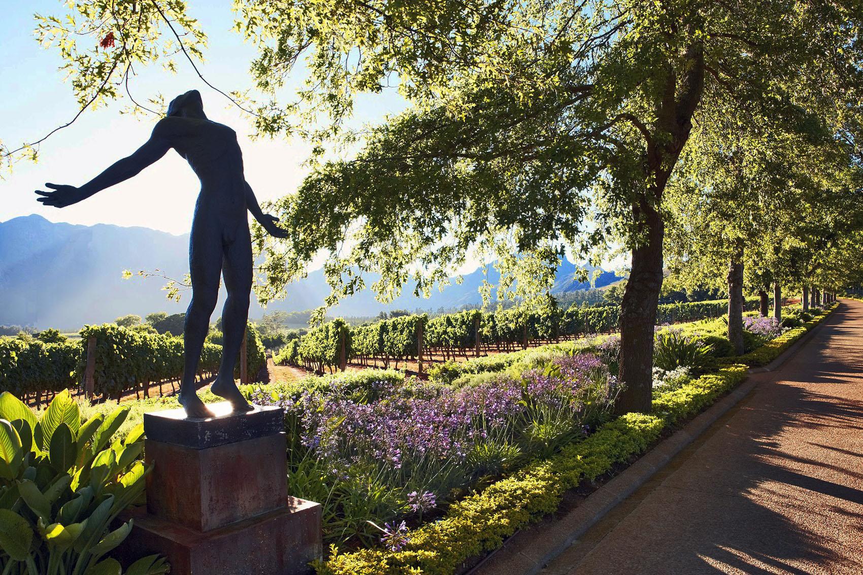Michael Fridjhon: Commodity Versus Terroir Wine photo