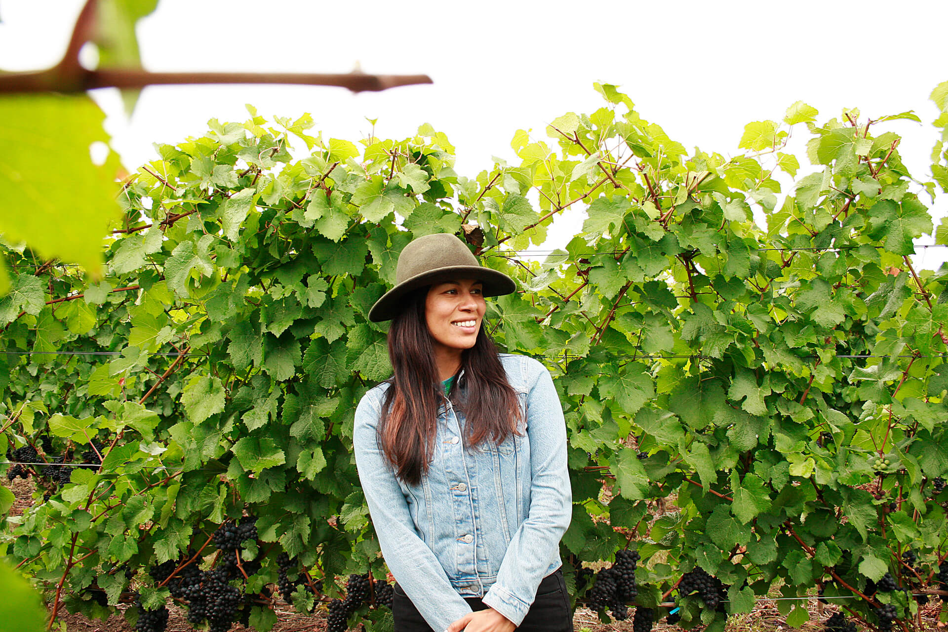 Six Latinx Experts Changing The Face Of American Wine photo