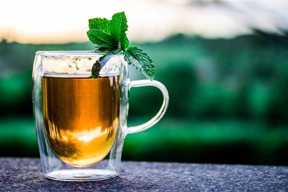 Herbal Tea Market Is Thriving Worldwide photo