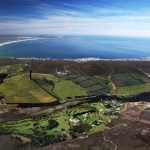 Hermanus bidding to become South Africa's first UNESCO City of Gastronomy photo