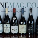 The Magnificent Seven: Top Wines in the Tonnellerie Saint Martin Pinot Noir Report 2019 announced photo