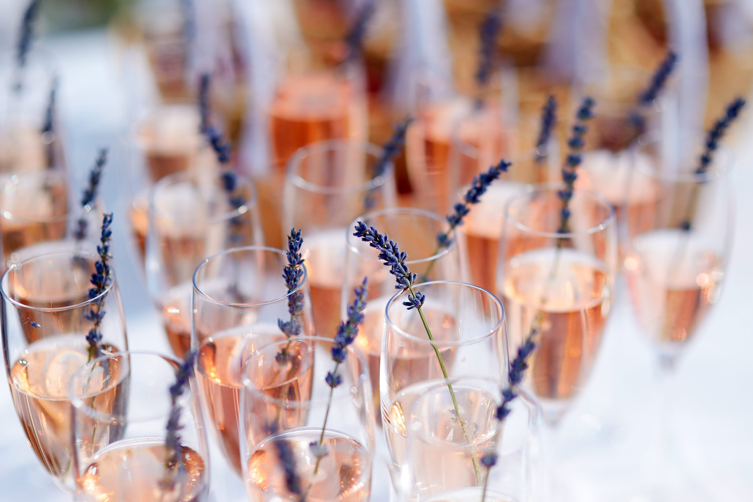How To Make A Ginsecco photo