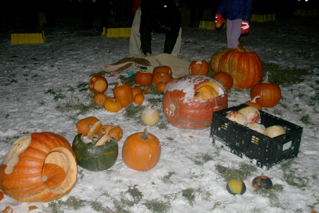 Flaming Pumpkins Set To Fly In Summerland photo