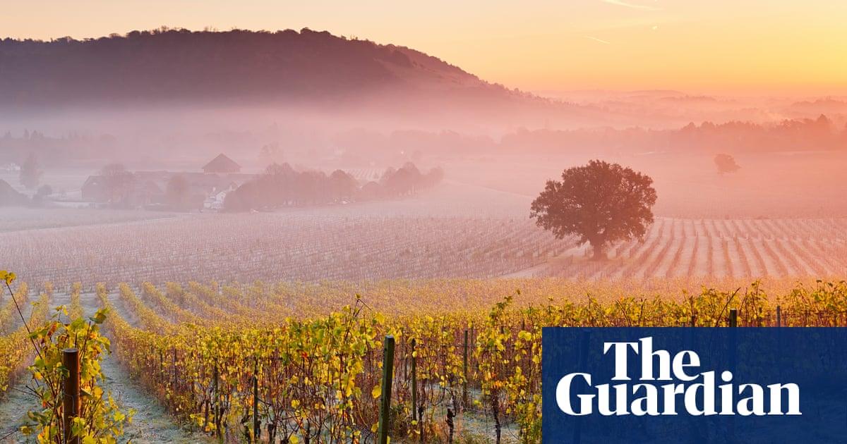 Sparkling Surrey: England's First Vineyard Hotel photo