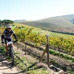 Eat, Sleep and Bike Package at Jordan Wine Estate photo