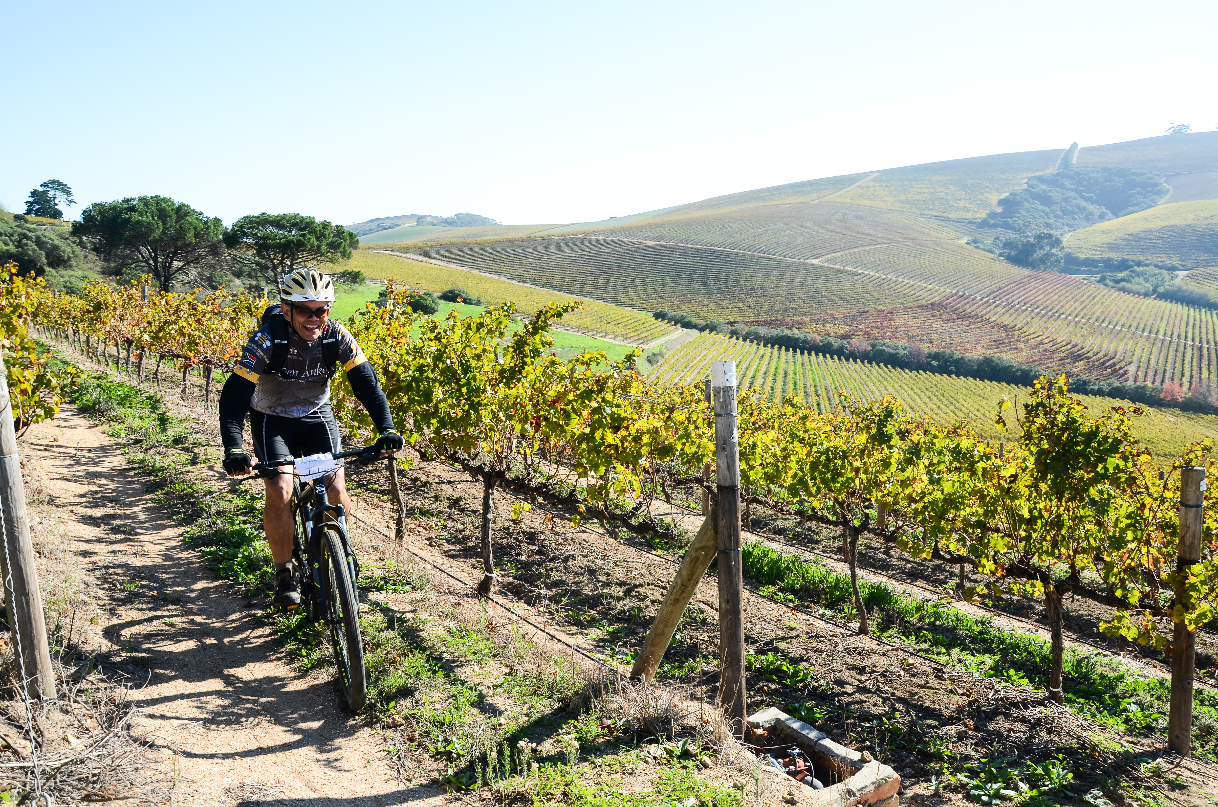Eat, Sleep and Bike Package at Jordan Wine Estate photo