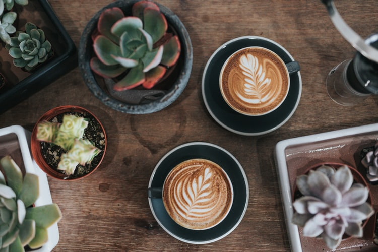 The Best Places In Paarl For Coffee Lovers photo