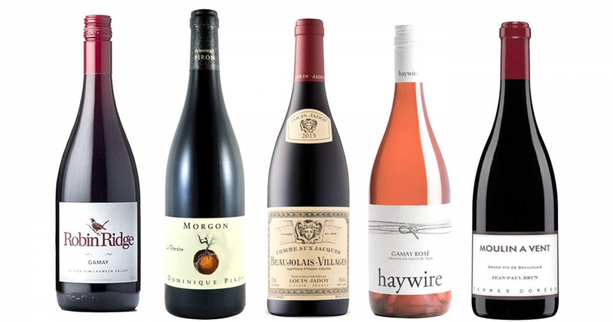 Go All-in On Gamay For Thanksgiving This Year photo