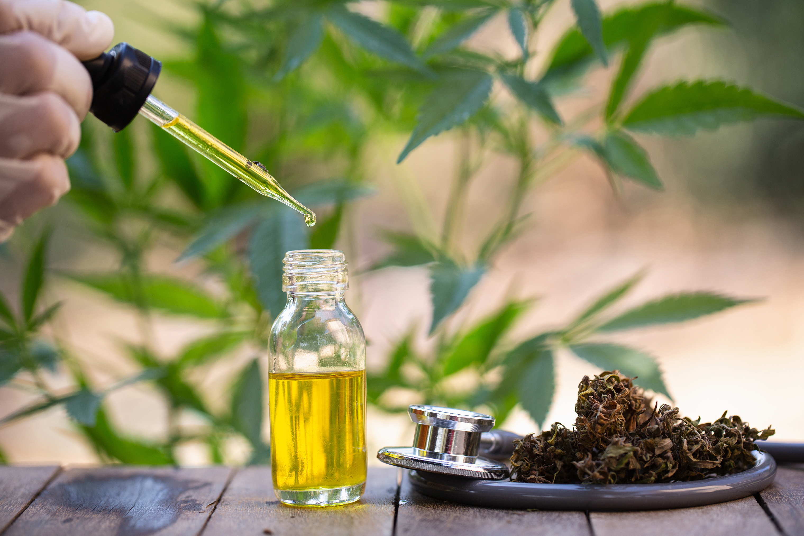 5 Reasons Why It's Worth It To Take CBD Today photo