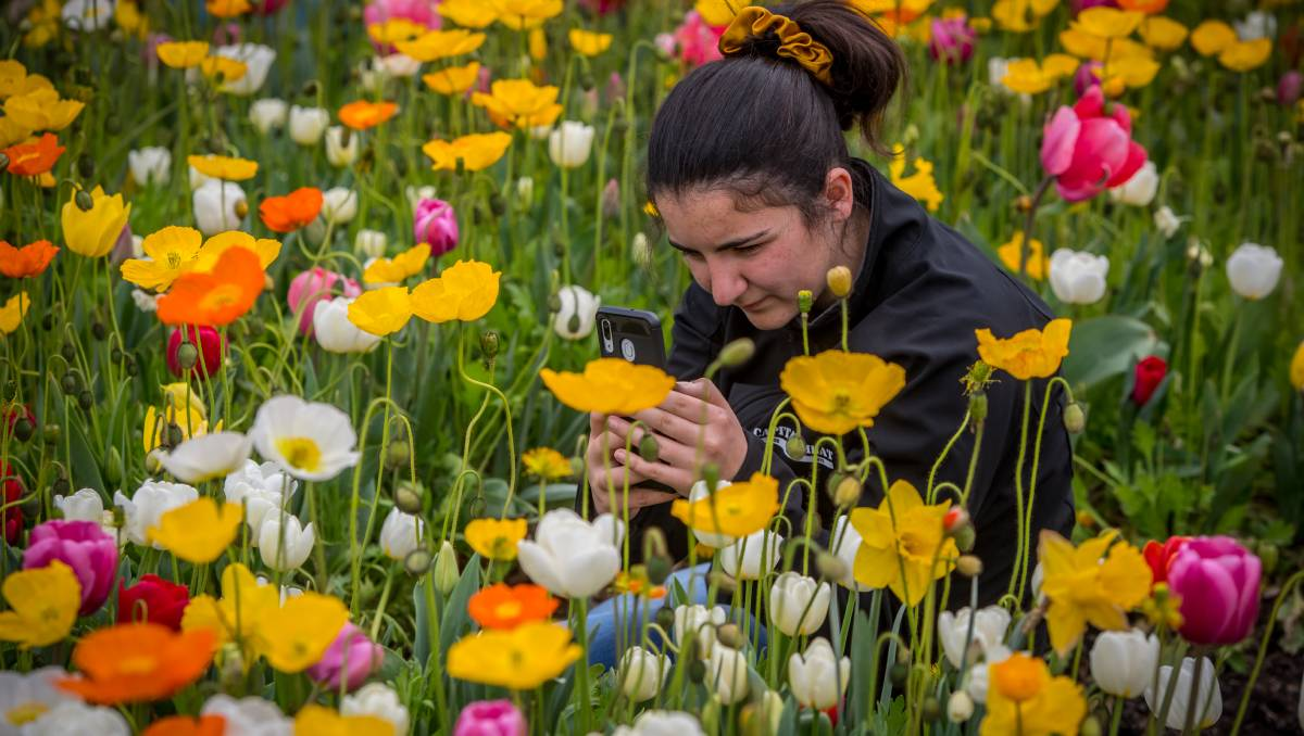 Floriade Breaks Attendance Record photo