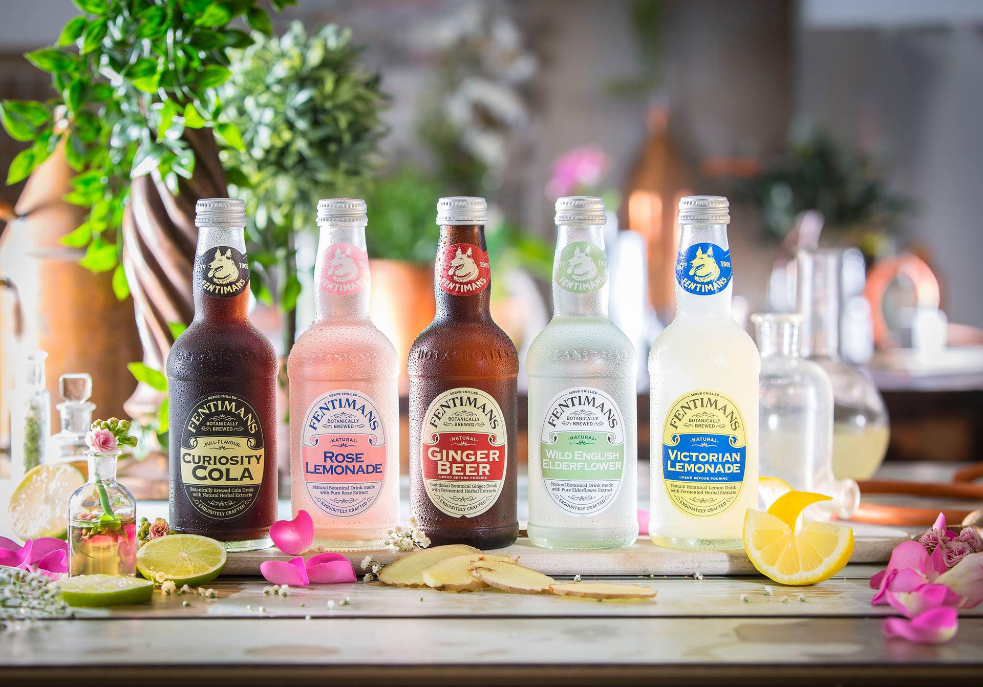 Artisanal Imports Partners With Fentimans Botanically Brewed Drinks photo