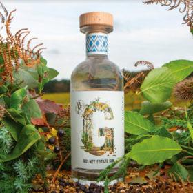 Bolney Wine Estate Unveils Inaugural Gin photo