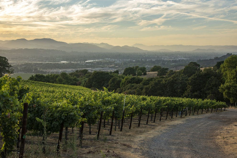 West Coast Wineries Who Are Making Amazing Sustainable Wines photo