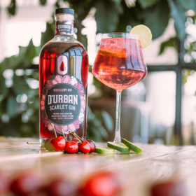 ?world?s First? Cascara-infused Gin Launches In South Africa photo