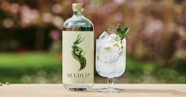 Seedlip: The World's First Distilled Non-alcoholic Drink photo