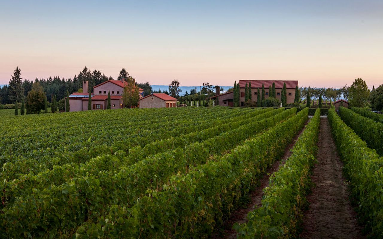 6 Willamette Valley Winery Open Houses That Are Giving Back This Thanksgiving photo