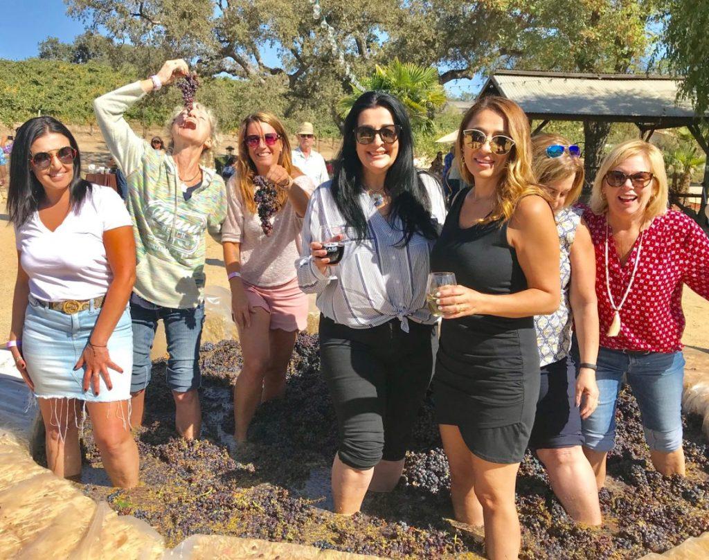 Paso's 2019 Harvest Festivities photo