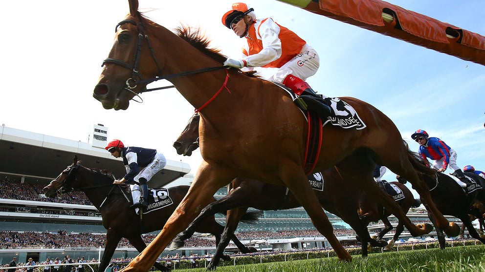 Live: Coverage Of Seppelt Wines Stakes Day 2019 photo