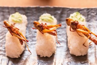 The Best Ways To Cook Insects photo