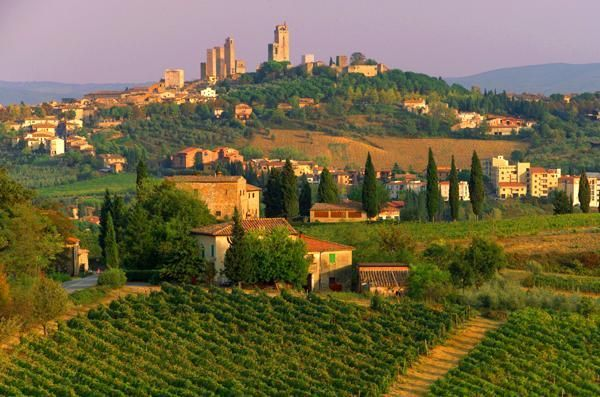 Why you need to plan a wine trip to Italy: Three tips when you do photo