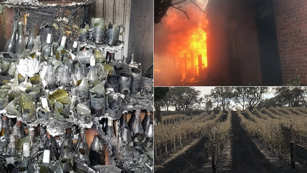 'we've Lost Everything': Family-owned Wineries Devastated By Sa's Bushfire Crisis photo