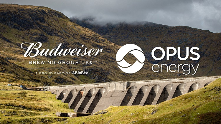 Budweiser Launches Green Energy Tariff photo