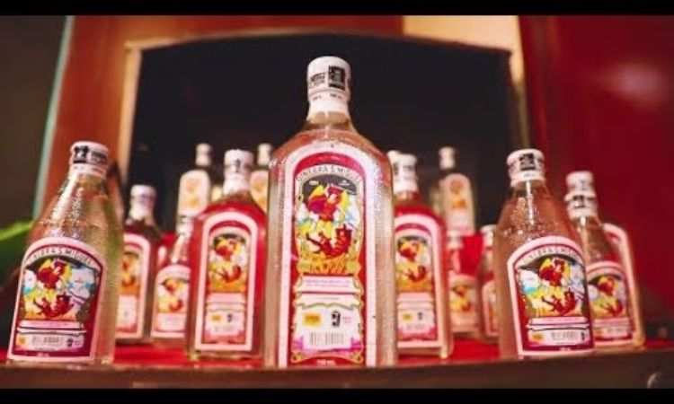 Ginebra San Miguel Bares Brand's History In Short Documentary photo