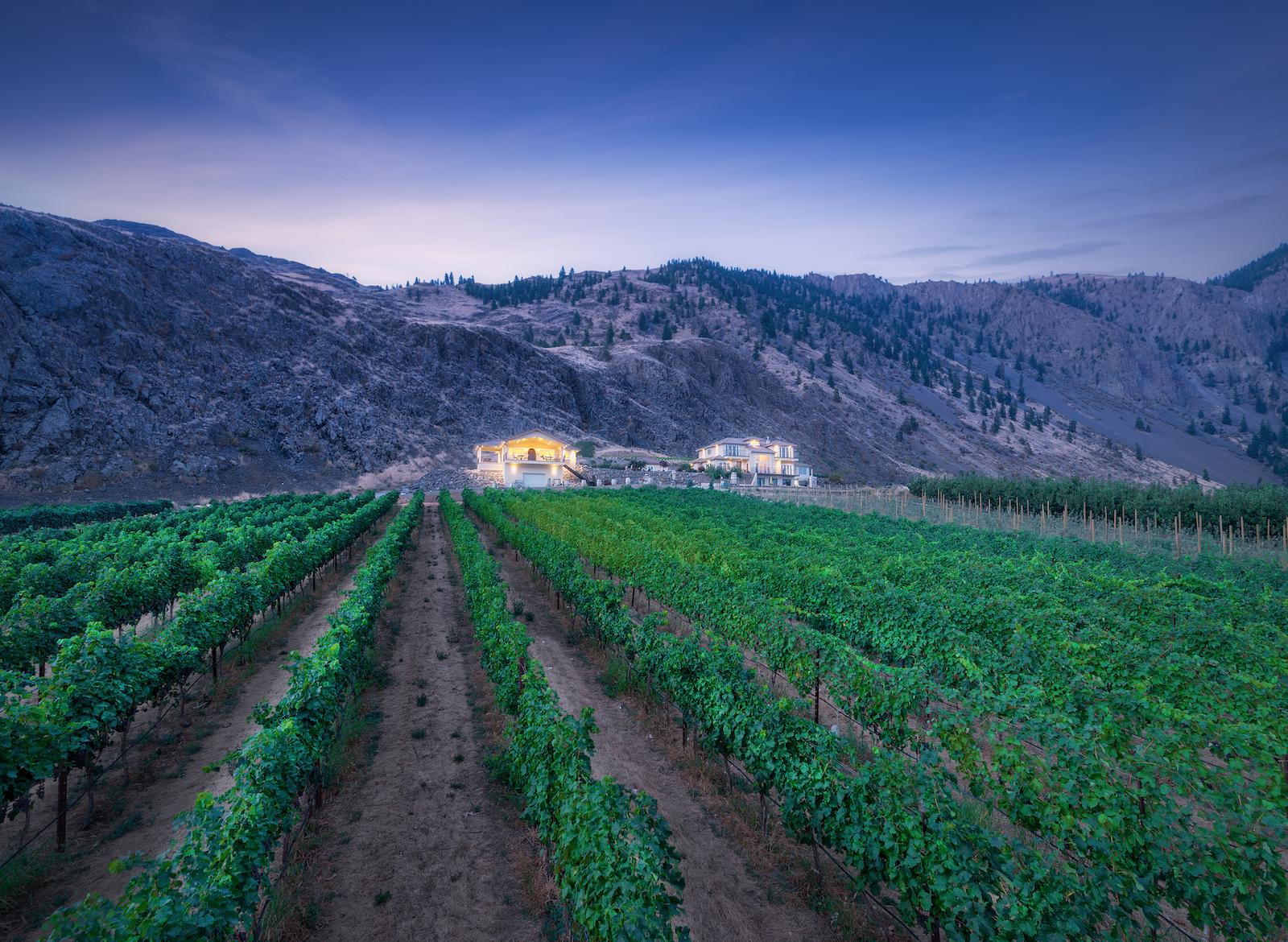 Corcelettes Estate Winery photo