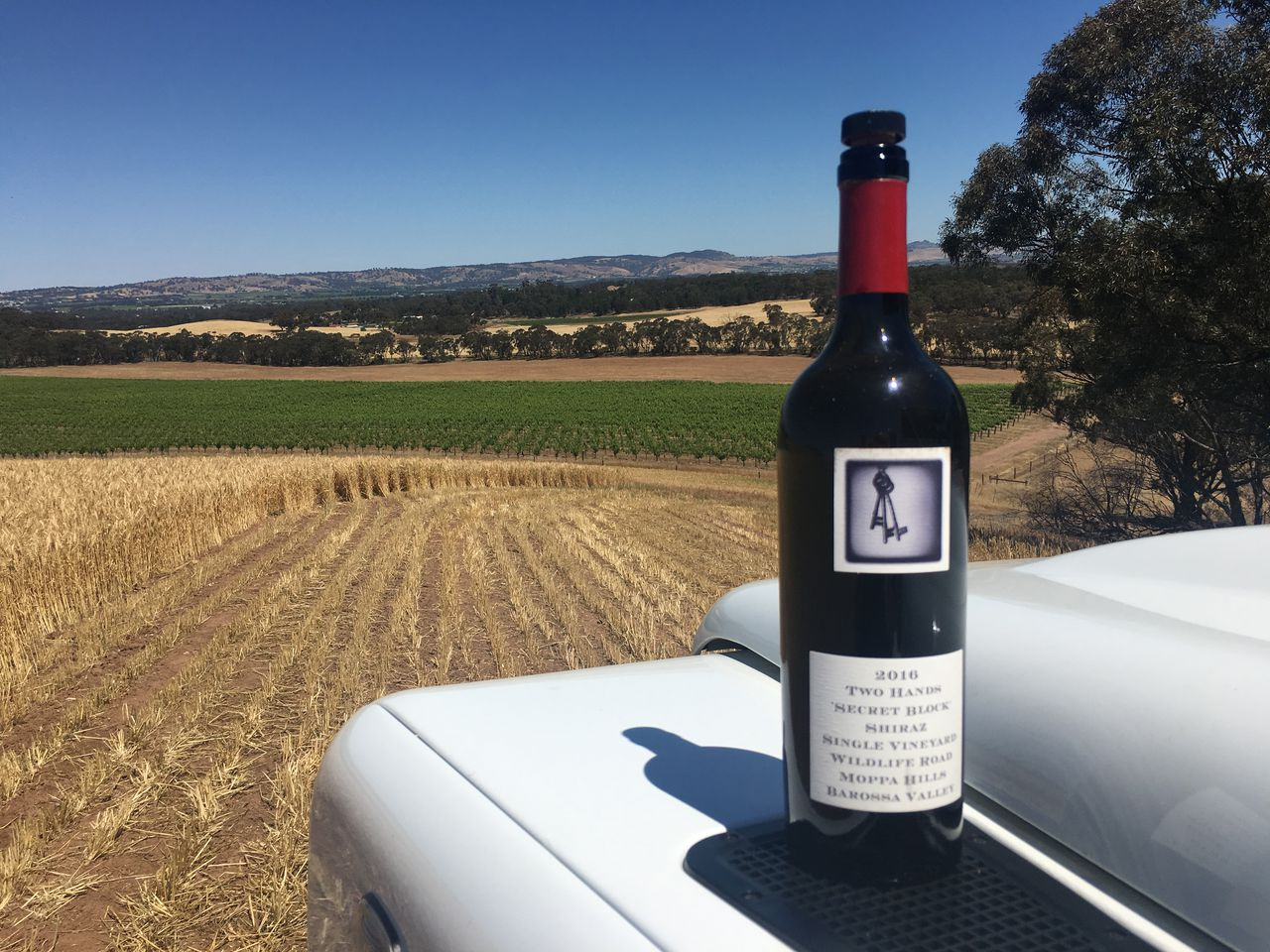 Australian Winery Proprietor Back ?home? In State College To Give Consumers A Taste Of His Passion photo