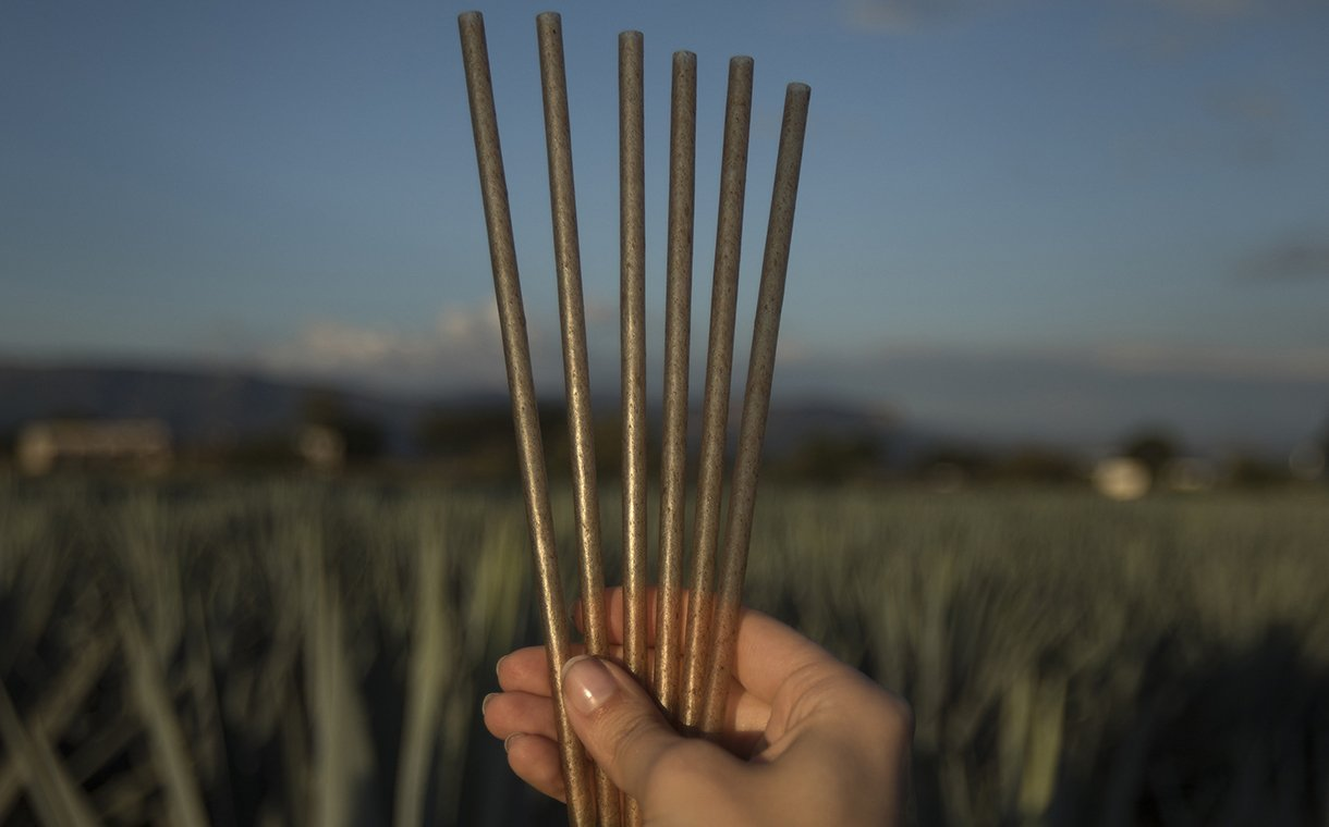 Jose Cuervo Creates Sustainable Drinking Straws From Agave Fibres photo