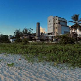 Wird: Barbados Rum Gi Must Avoid ?standardisation? photo