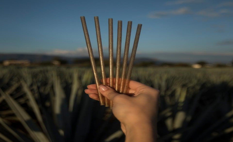Jose Cuervo Takes A Shot At 'environmentally Responsible Drinking' photo