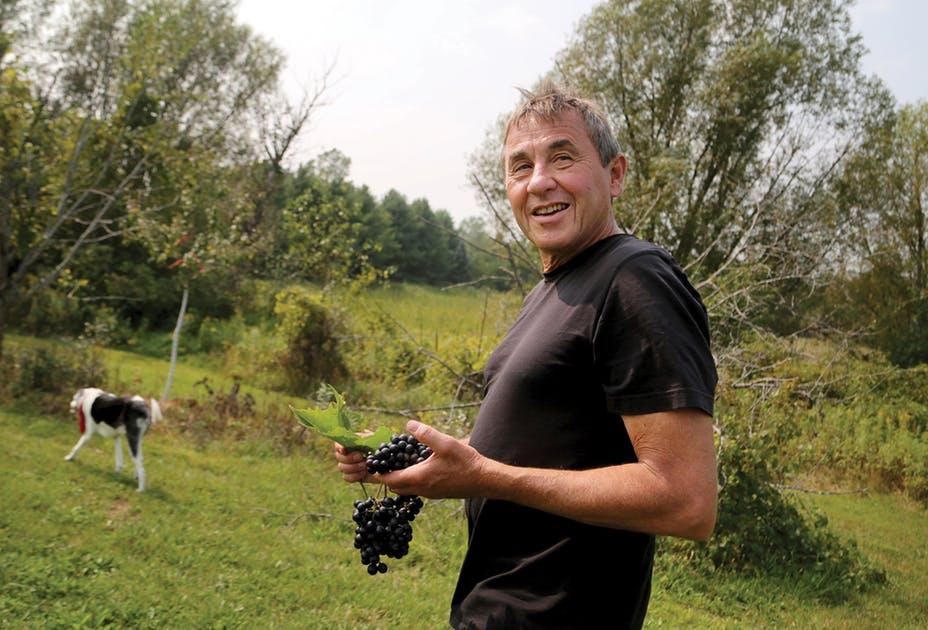 Science-driven Minnesota Wines Pioneer The Unforgiving North photo