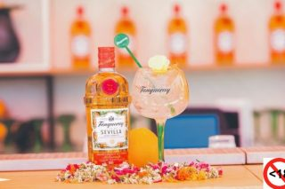 Four Tanqueray Cocktails To Impress Your Guests photo