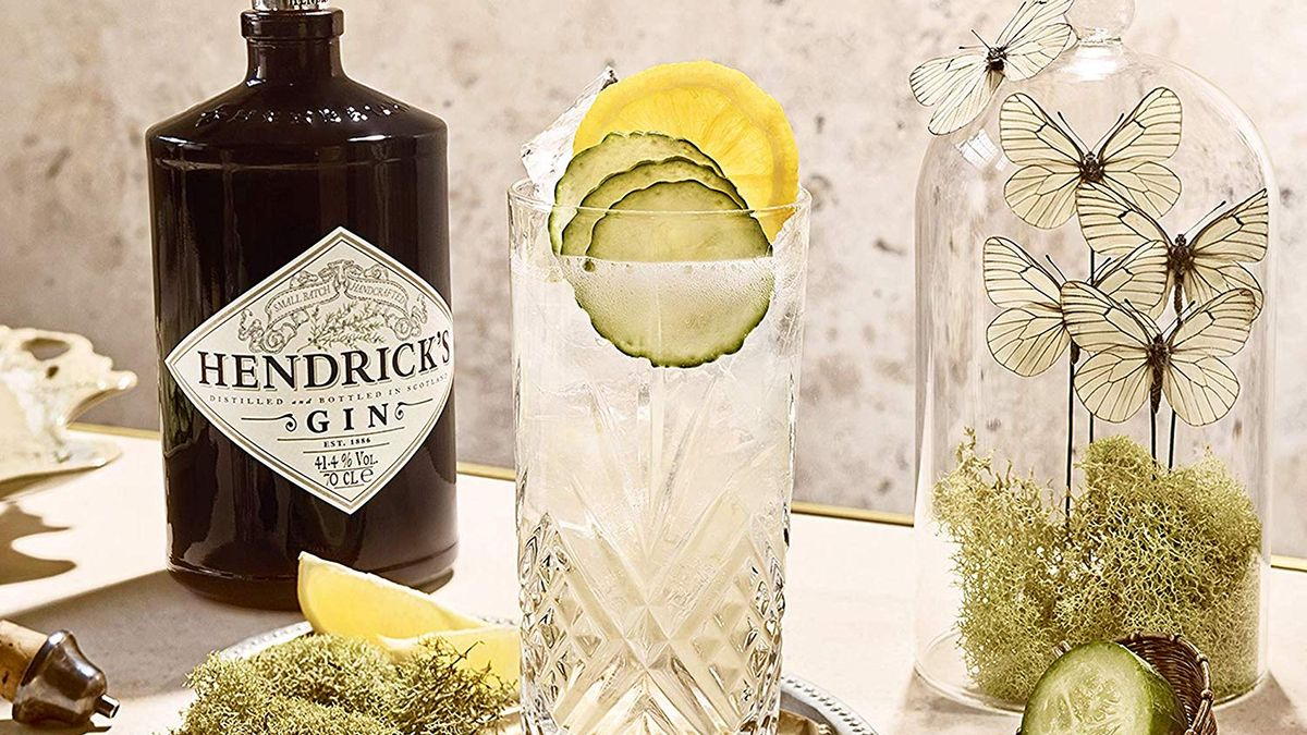Best Gins To Make The Perfect G&t With photo