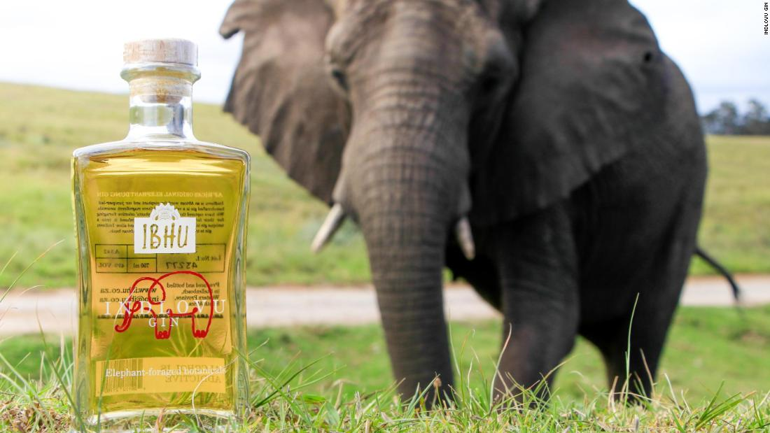 Why This Gin Is Made With Elephant Dung photo