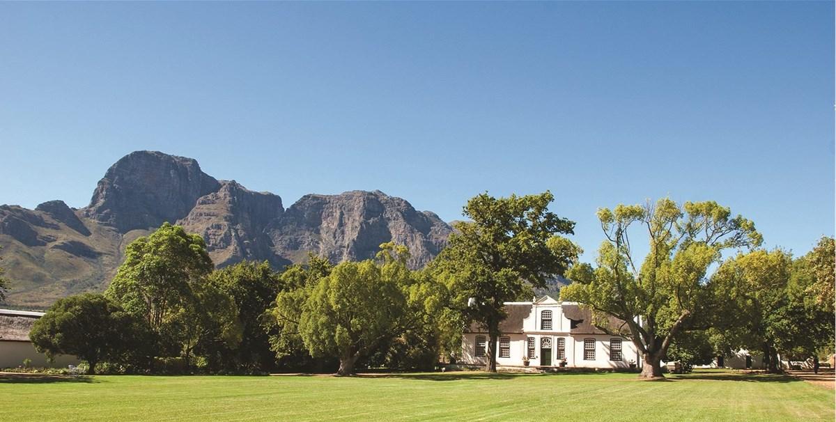 Boschendal Wine Estate To Host 2020 Cape Wine Auction photo