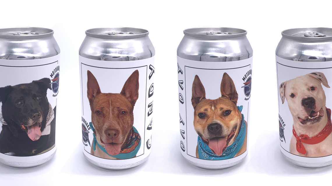 Bradenton Brewery Puts Shelter Dogs On Beer Cans To Find Them Forever Homes photo