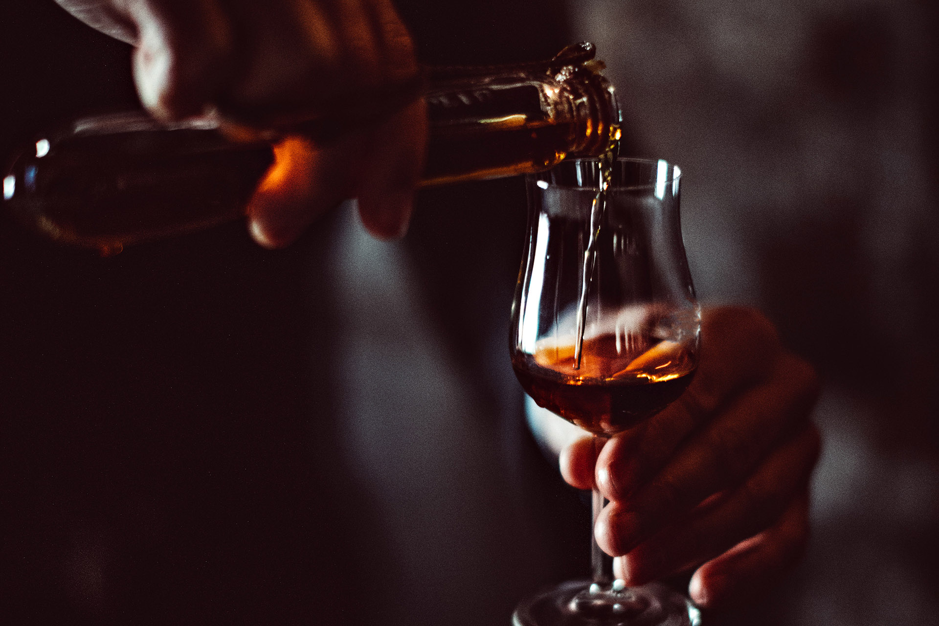 Dutch Heritage, Prized Spiders And 10 Other Things You Should Know About Cognac photo