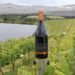 For the Love of Pinot Noir photo