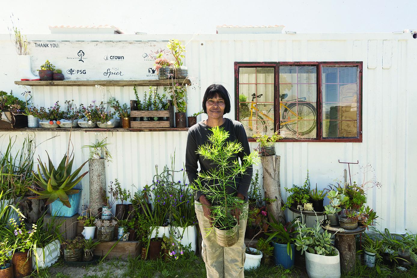 Spier wins Amorim International Biodiversity for Indigenous Replanting Programme photo
